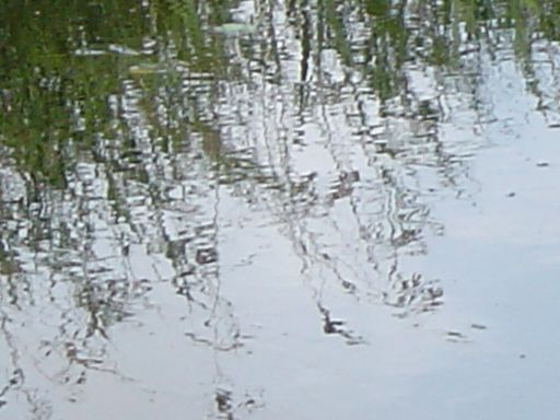 2006-08-15-007
